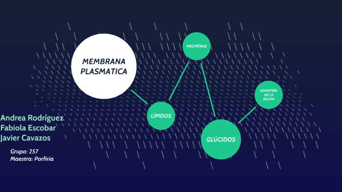 Membrana By Mayte Escobar On Prezi Next
