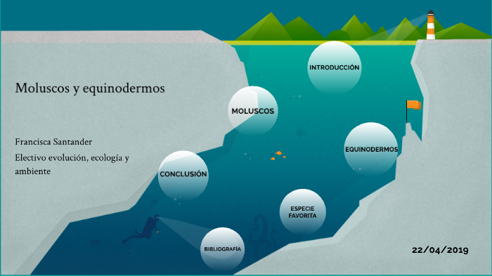 Equinodermos Y Moluscos By Francisca Santander On Prezi Next