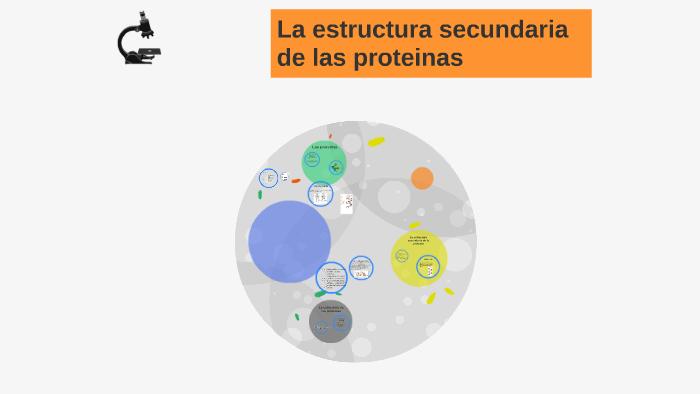 La Estructura Secundaria De Las Proteinas By Sebastian