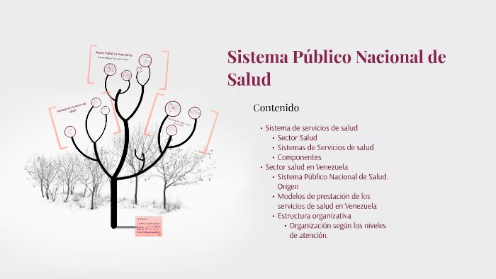 Sistema Público Nacional De Salud By Laura Porto On Prezi