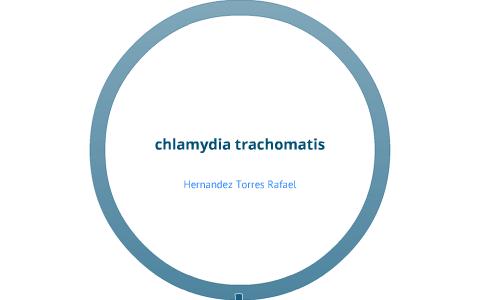 Chlamydia trachomatis bacteria o parásito