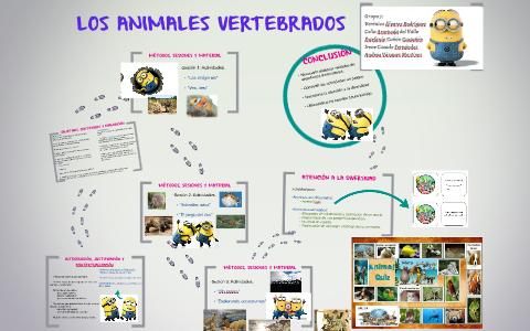 Los Animales Vertebrados By Veronica Alvarez On Prezi