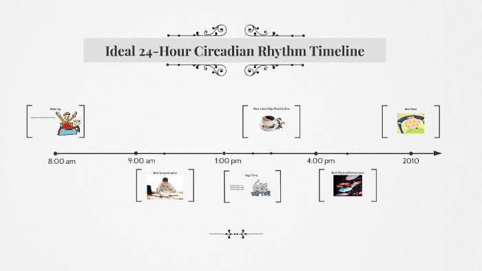 Ideal 24 Hour Circadian Rhythm Timeline By Cody Norton Steeple On Prezi