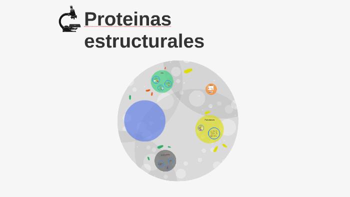 Cuales son las proteinas estructurales