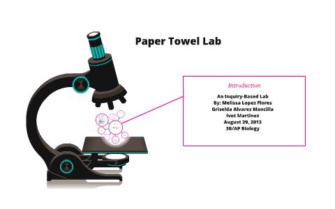 paper towel lab