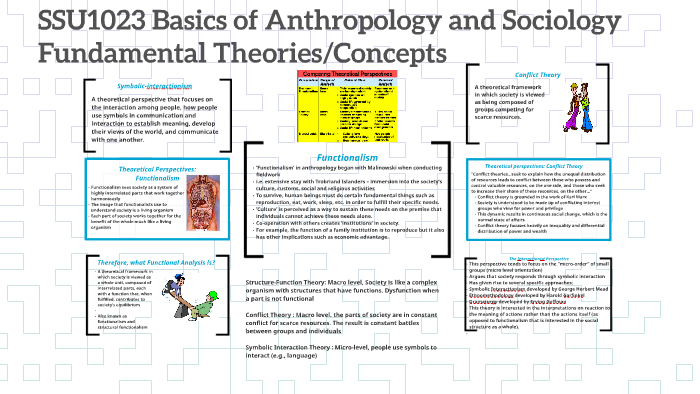 Ssu1023 Basics Of Anthropology And Sociology By Dayang