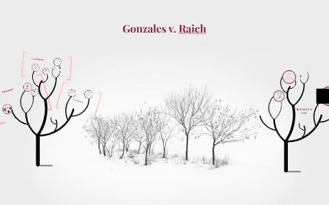 gonzales v raich case brief