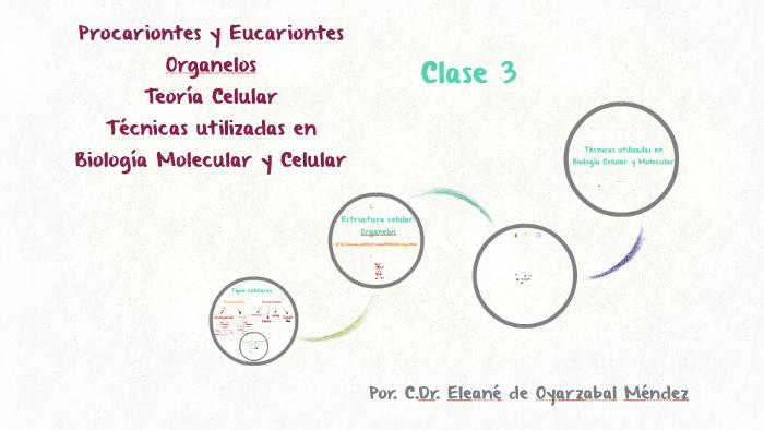 Teoría Celular Y Técnicas Utilizadas En By Eleane De