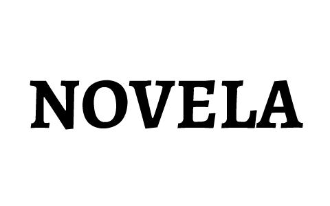 La Novela Información General Y Elementos By Salvador