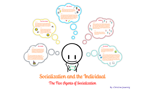 Essay on agents on political socialization