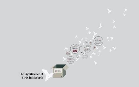 bird imagery in macbeth