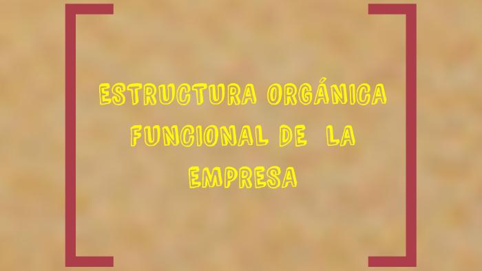 Estructura Organica Funcional De Una Empresa By Maribel