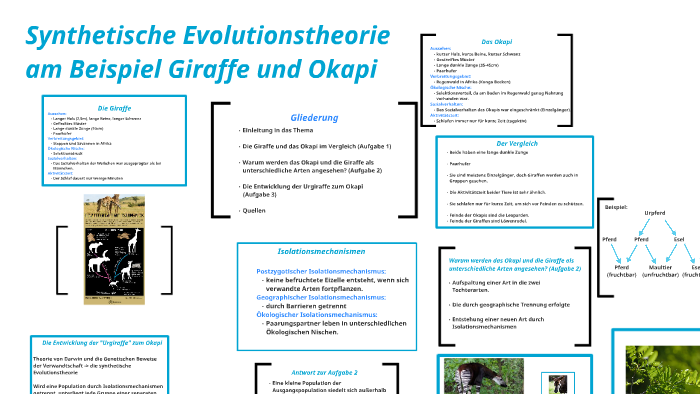 Synthetische Evolutionstheorie By Michelle Lange