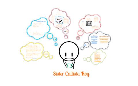 callista roy nursing theory