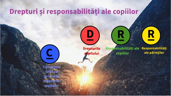 Responsabilitati