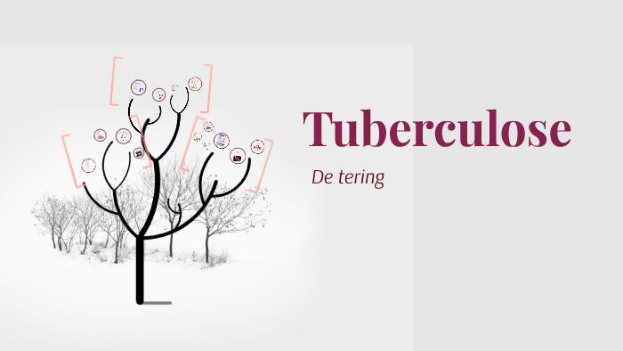 Tuberculose By Carmen Ritzema On Prezi