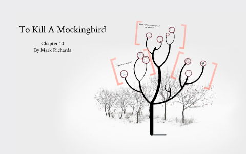 to kill a mockingbird chapter 10 questions answers