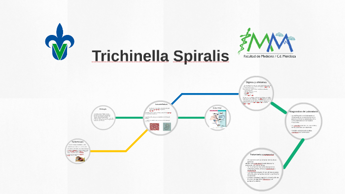 epidemiologia de trichinella spiralis