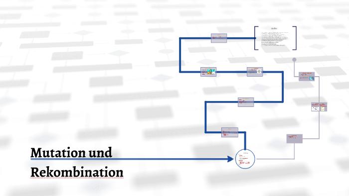 Mutation Und Rekombination