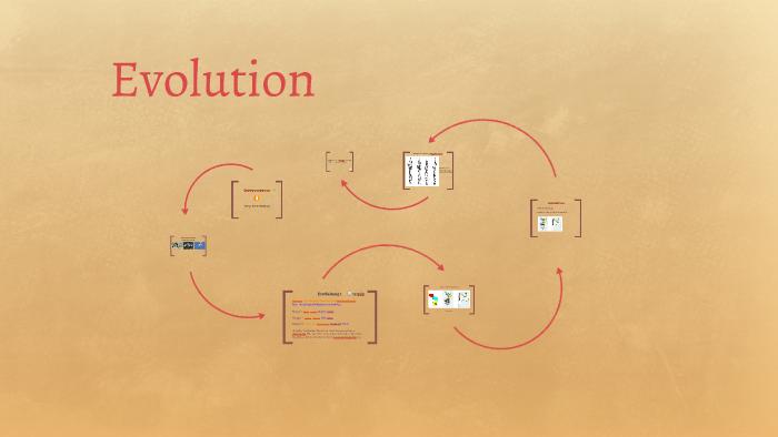 Belege Evolution