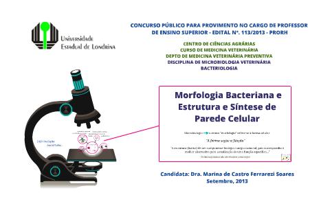 Uel Aula 10 Morfologia Bacteriana E Síntese Da Parede