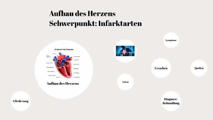 Herzinfarkte By Julia Domgjoni On Prezi Next