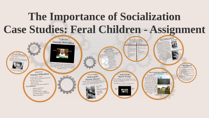what is the importance of socialization