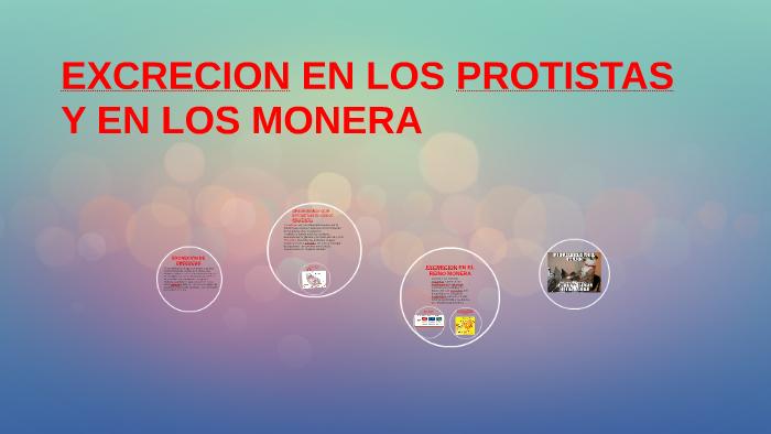 EXCRECION EN LOS PROTISTAS Y EN LOS MONERA by pablo..