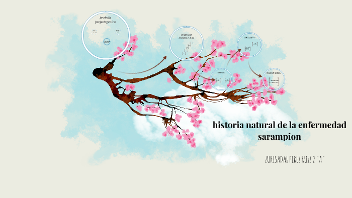 Historia Natural De La Enfermedad Sarampion By Zurisadai