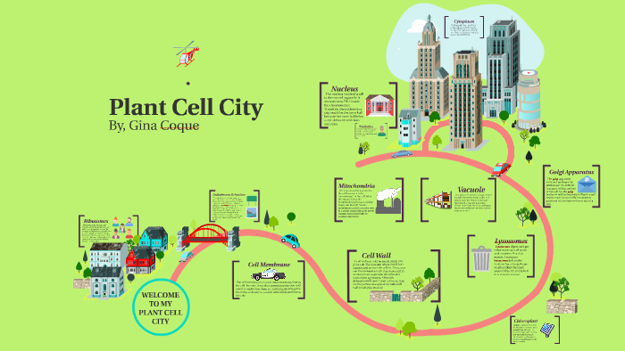 Plant Cell City By Gina Coque On Prezi