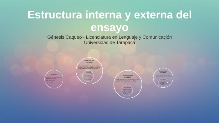 Estructura Interna Y Externa Del Ensayo By Genesis Caqueo