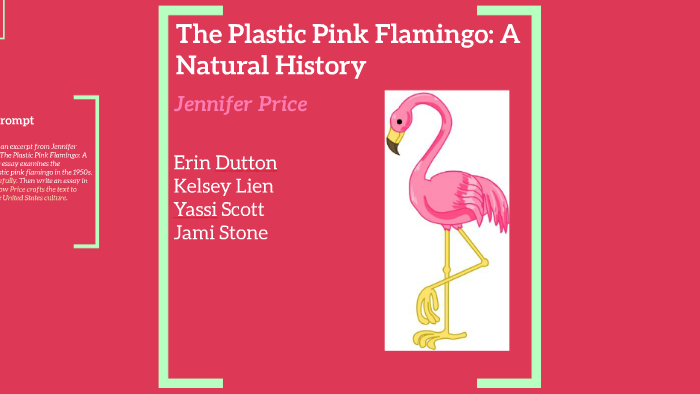 Flamingos Analysis By Erin Dutton On Prezi