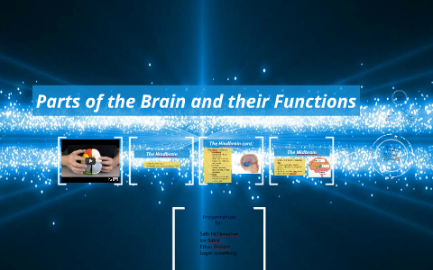 Parts of the Brain and their Functions by Seth Mac on ...