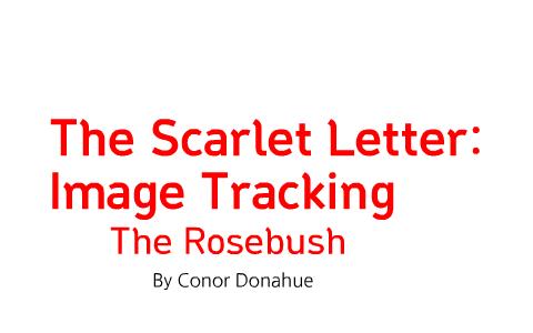 Scarlet Letter Rosebush Symbolism By Conor Donahue On Prezi