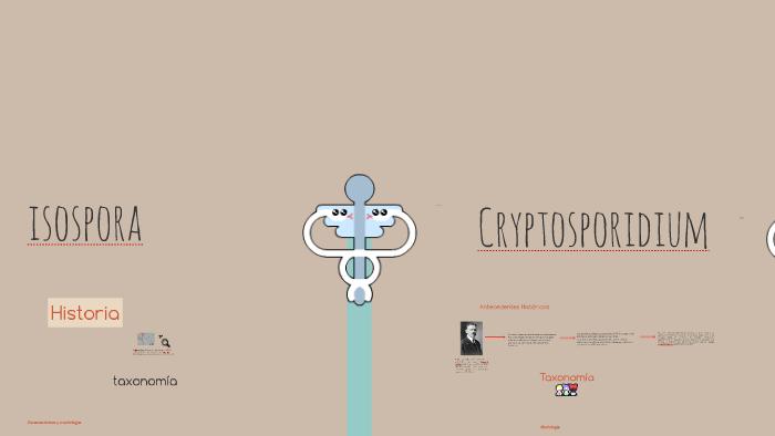 caracteristicas del ooquiste de cryptosporidium
