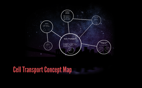 Cell Transport Concept Map By On Prezi