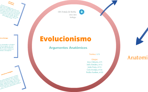 Argumentos Anatómicos By Inês Simões On Prezi
