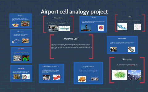 Airport Cell Analogy Project By Liam Kirkwood On Prezi