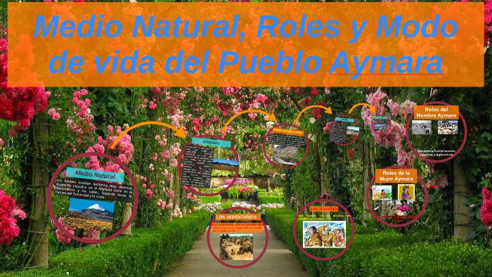 Medio Natural Roles Y Modo De Vida Del Pueblo Aymara By
