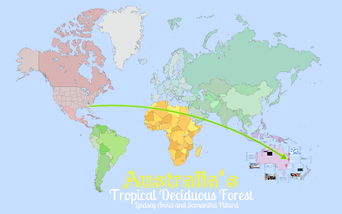 Australia's Tropical Deciduous Forests by Lindsey Annis on Prezi on