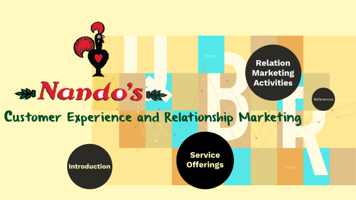 nandos aims and objectives