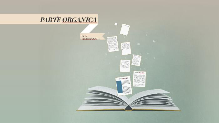 Parte Organica De La Constitucion By Fernanda Guerrero On Prezi