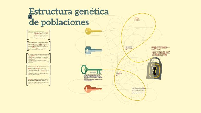 Estructura Genética De Poblaciones By Jeniffer Berocay On Prezi