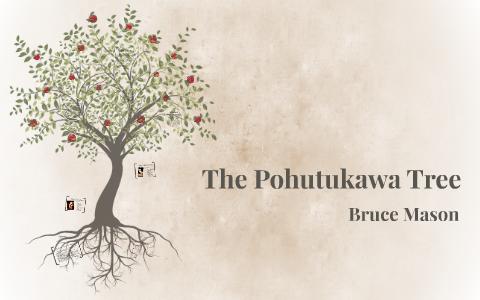 the pohutukawa tree bruce mason