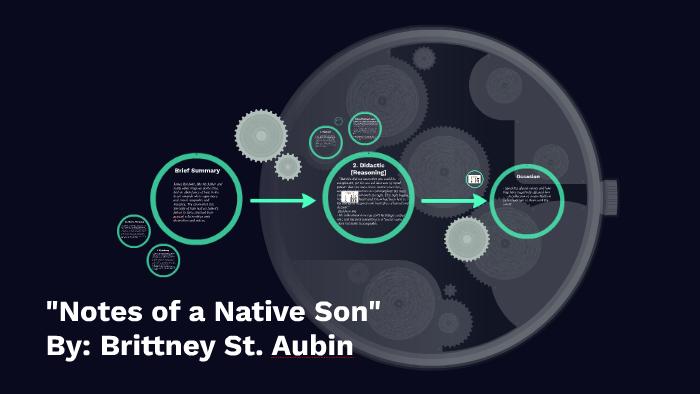 notes of a native son rhetorical analysis