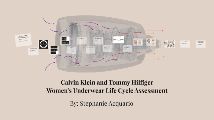 a812fa2631b954 Calvin Klein and Tommy Hilfiger by Steph Acquario on Prezi