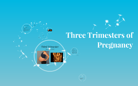 Pregnancy three trimesters of Pregnancy Stages: