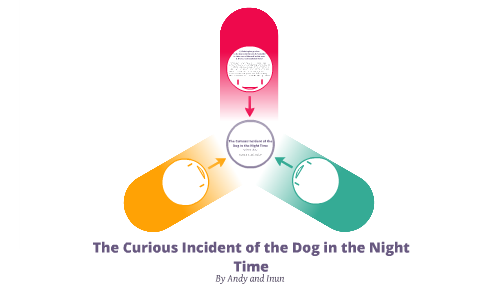 the curious incident of the dog in the nighttime themes