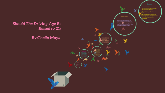 why shouldn t the driving age be raised to 21