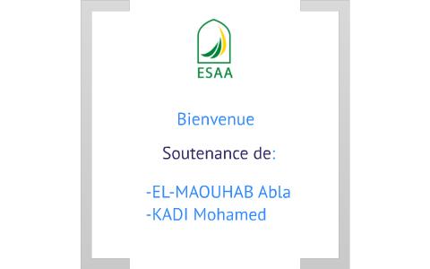 Presentation Soutenance By Mohamed Kadi On Prezi